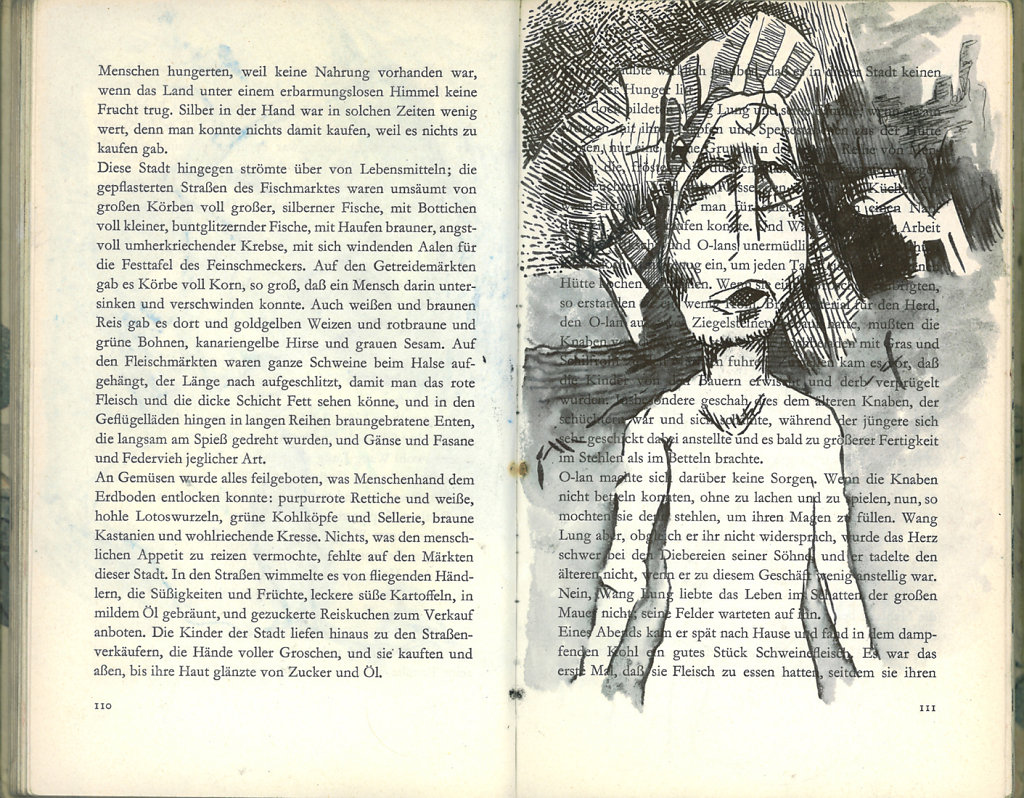 Buch20.jpg